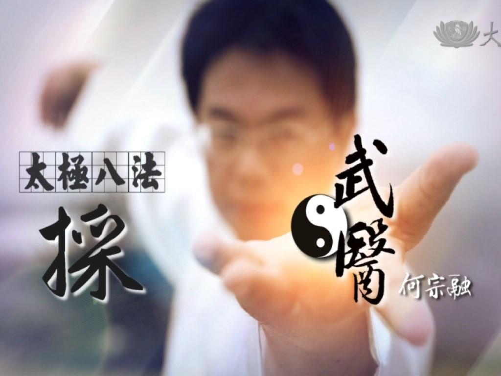 The Eight Methods of Tai Chi - Pluck