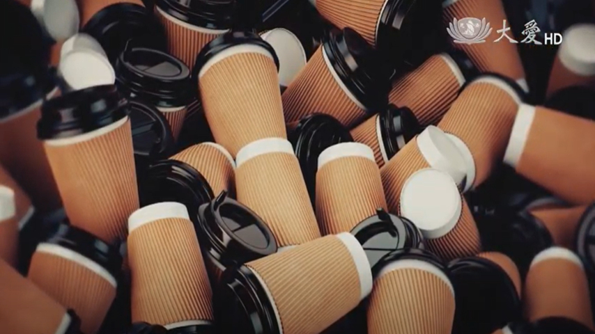 Are Paper Cups Really Made of Paper?